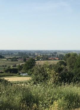 Boeschepe